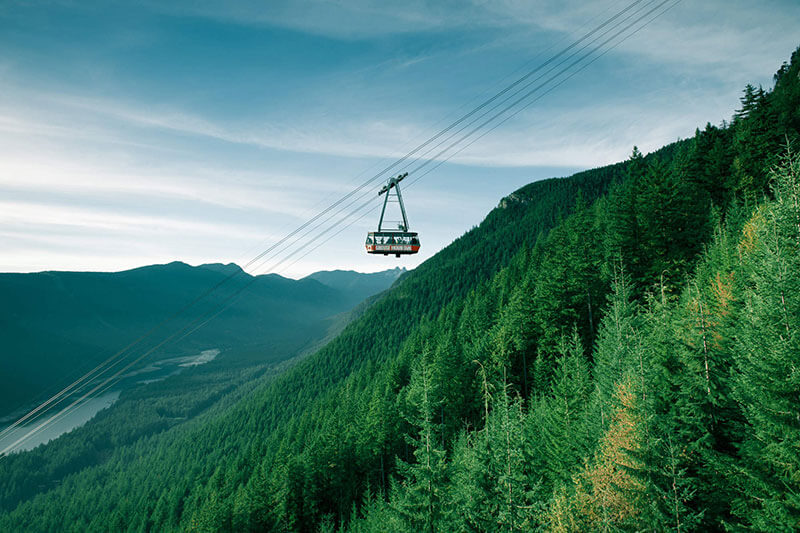 A gondola hovering above the green mountainside of the north shore