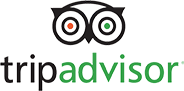 Green, black and red small sized Tripadvisor logo