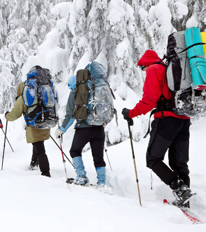 Skiers enjoying a hike on snowy trails